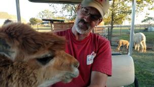John alpaca