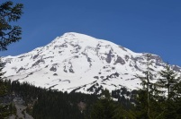 Mount Rainer National Park