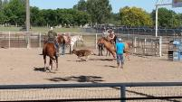 Roping practice, Ontario, OR