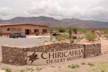 chiricahua-desert-museum